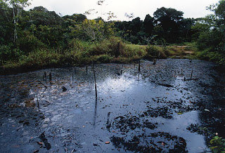 https://jgrosario.files.wordpress.com/2013/06/c9935-chevron-contaminacion_amazonia.jpg