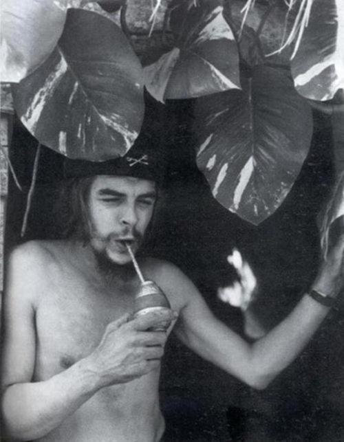El Che tomando mate